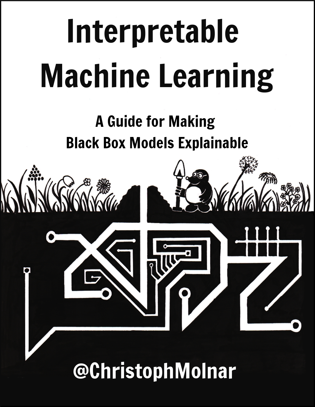 best interpretable machine learning tutorial